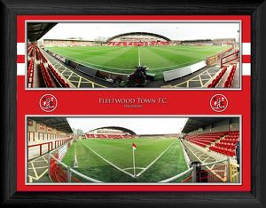 Framed special editions/framed highbury panoramic montage